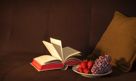 紙の本の読書ならマイ・ブックカバーがオススメ!どんな本も最高に手になじむ!
